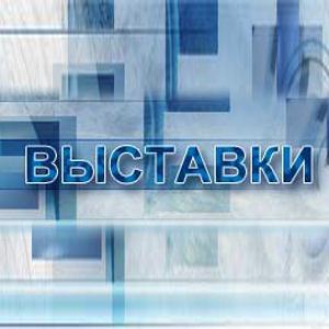 Выставки Комсомольск-на-Амуре